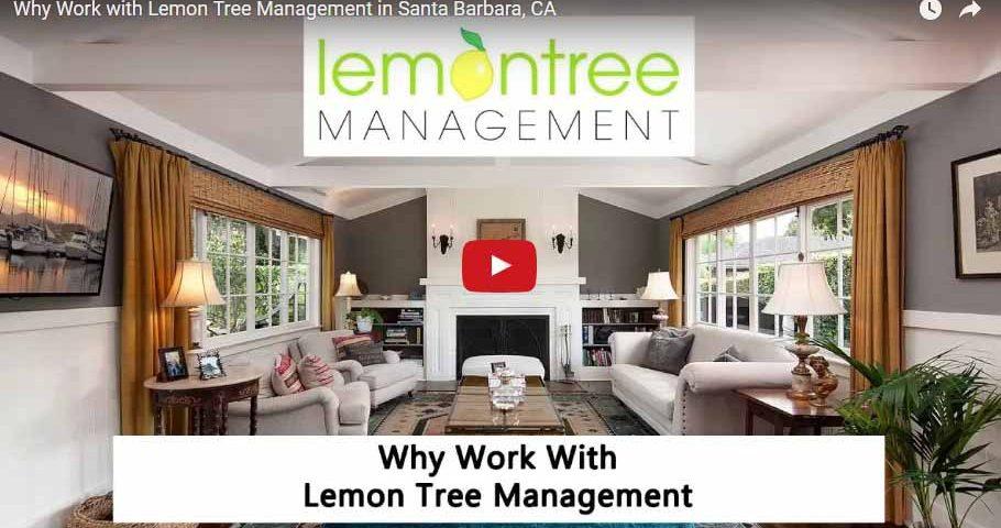 work lemon tree management