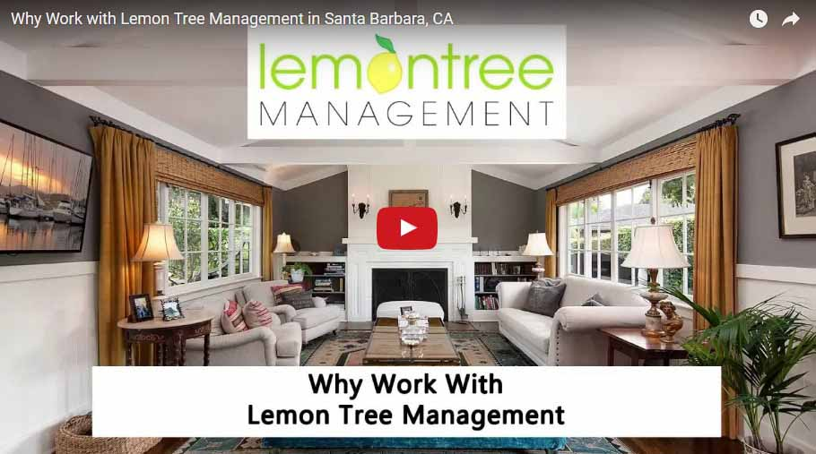 work lemon tree management